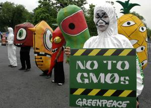 bioethical issues on genetically modified organisms